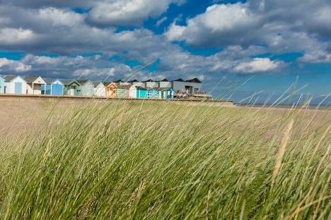 Coastal LDO Image